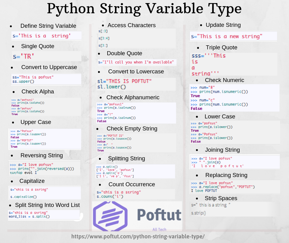 Python String Variable Type Infographic