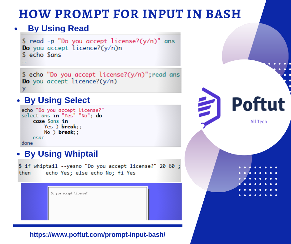 How Prompt for Input in Bash Infografic