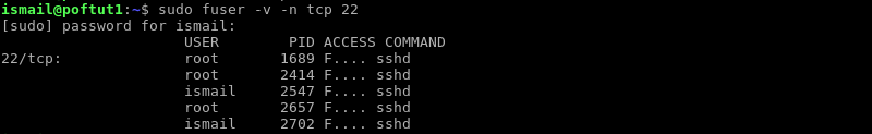 Display Processes About TCP and UDP Sockets
