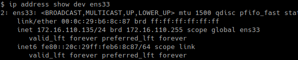 Show Specific Interface IP Address with ip Command