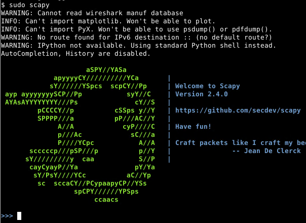 Start Scapy Interactive Shell