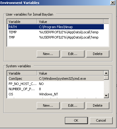 Set Environment Variable For Windows